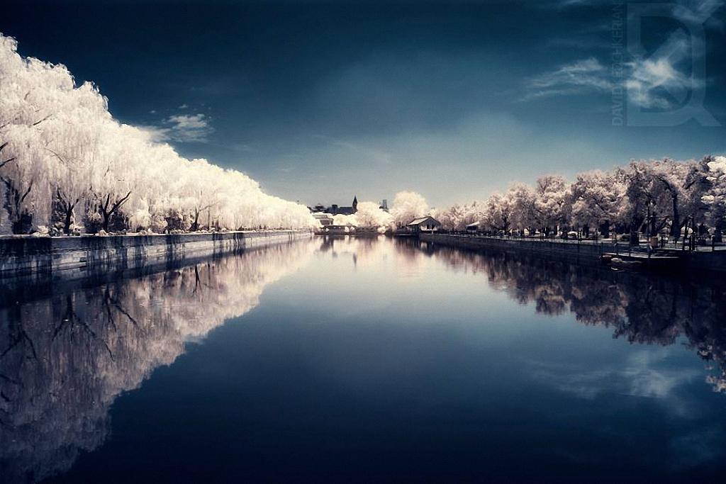 skazochnyj-mir-v-infrakrasnom-svete-11
