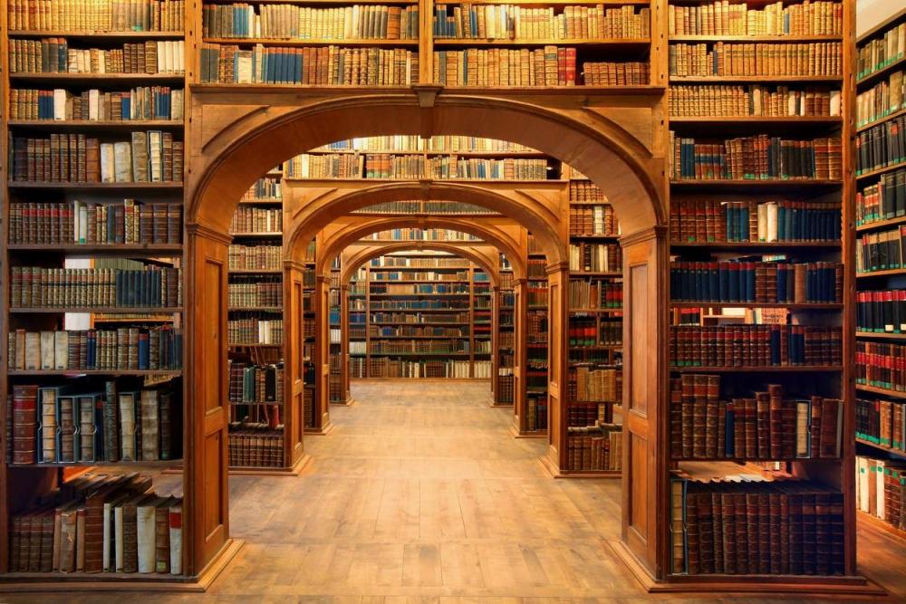 1752110-R3L8T8D-1000-Bibliothek3-Pech_1