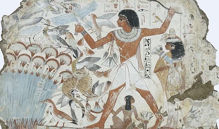 crazy-egypt-06