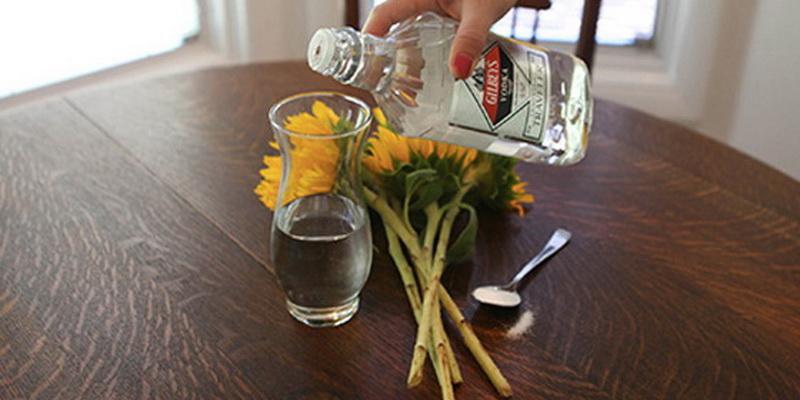 vodka-11-neozhidannyh-primenenij_4de0a068df42d0fd3eeabb66502fae80