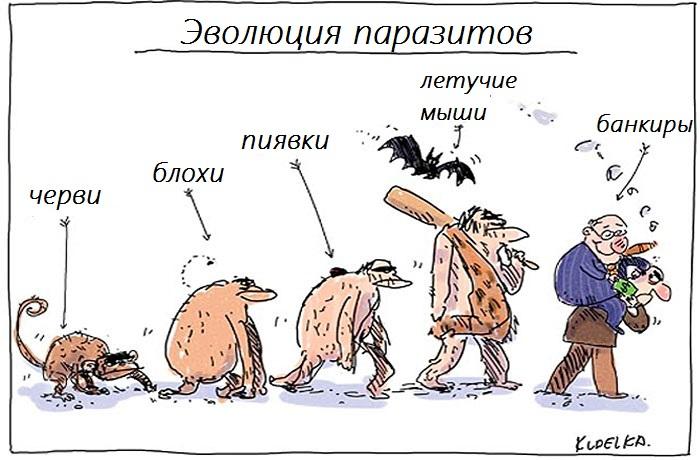 evolution-6