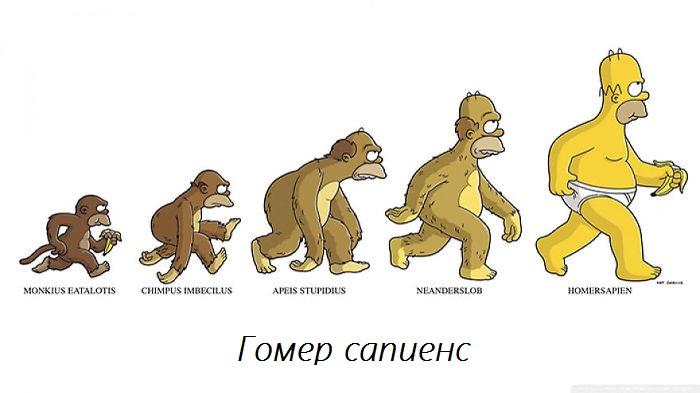 evolution_14