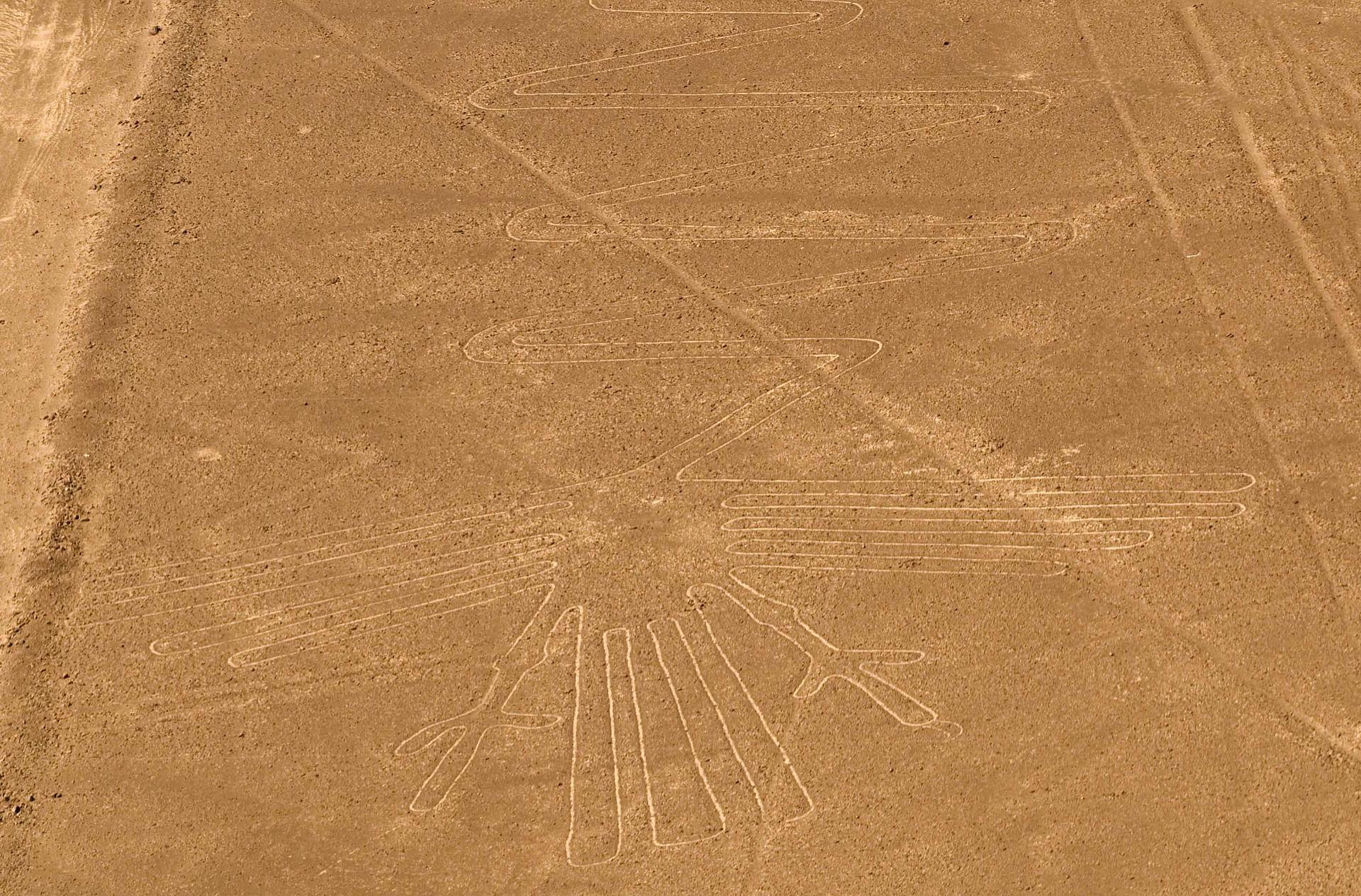 Lignes_de_Nazca_oiseau