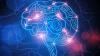 10 փաստ ուղեղի մասին, ինչը ապացույցն է այն բանի, որ մենք ունակ ենք ամեն ինչի