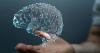 Կկարողանա՞ք հավաքել 10 միավոր այս IQ ԹԵՍՏՈՒՄ